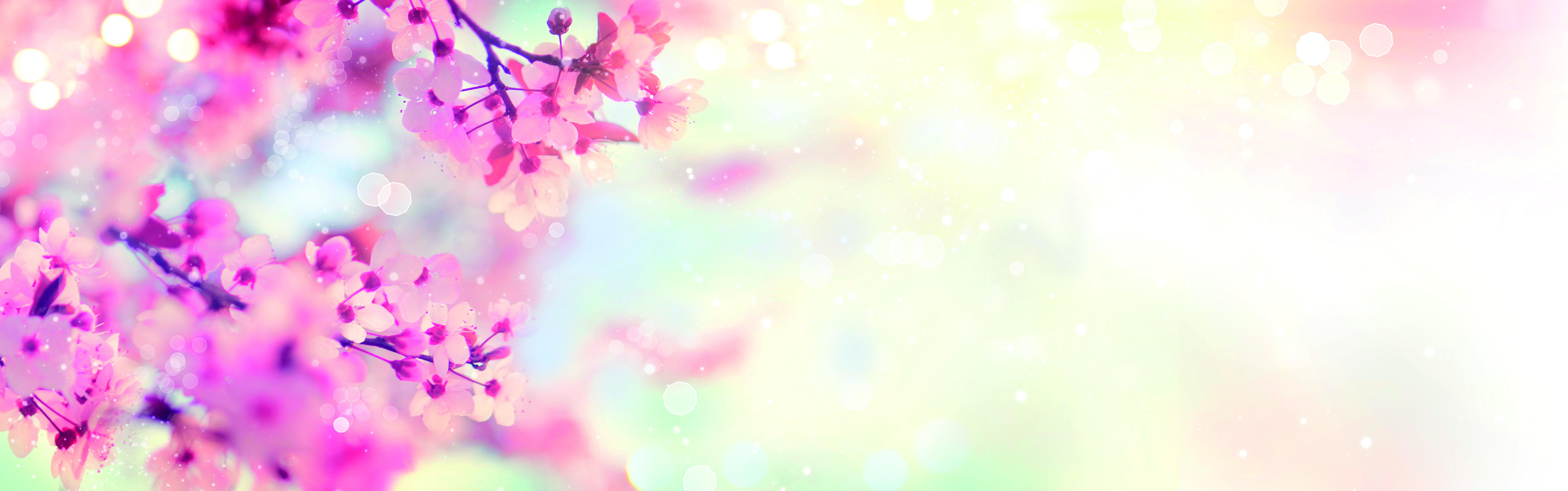 Sfondo con fiori di pesco nell'angolo destro
